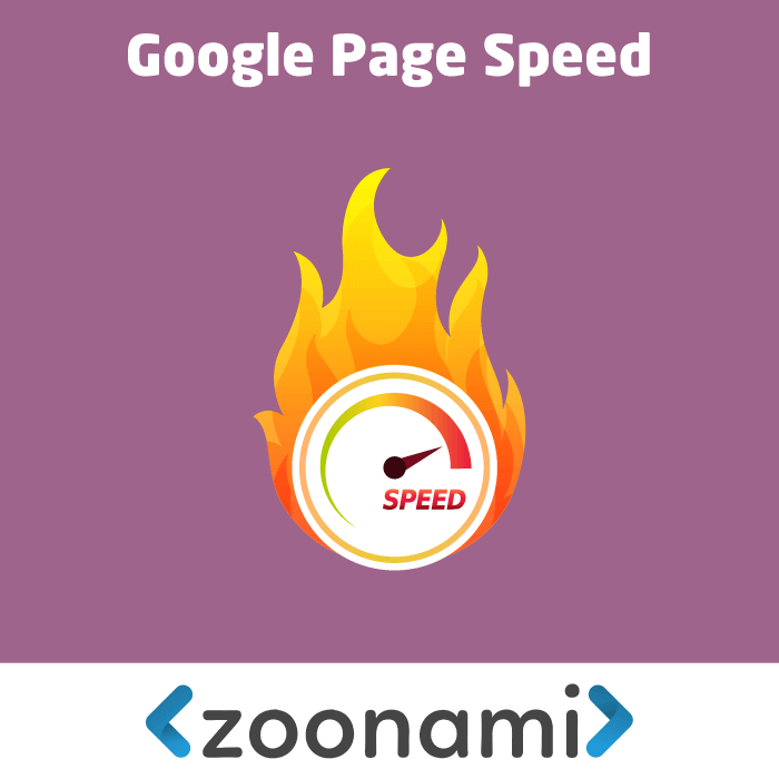 Magento 2 Google Page Speed Optimizer